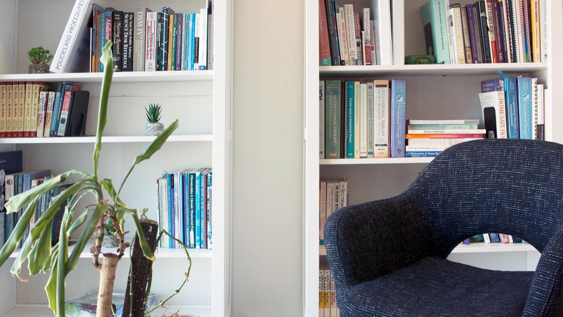 Zoom Background OTFP bookshelves