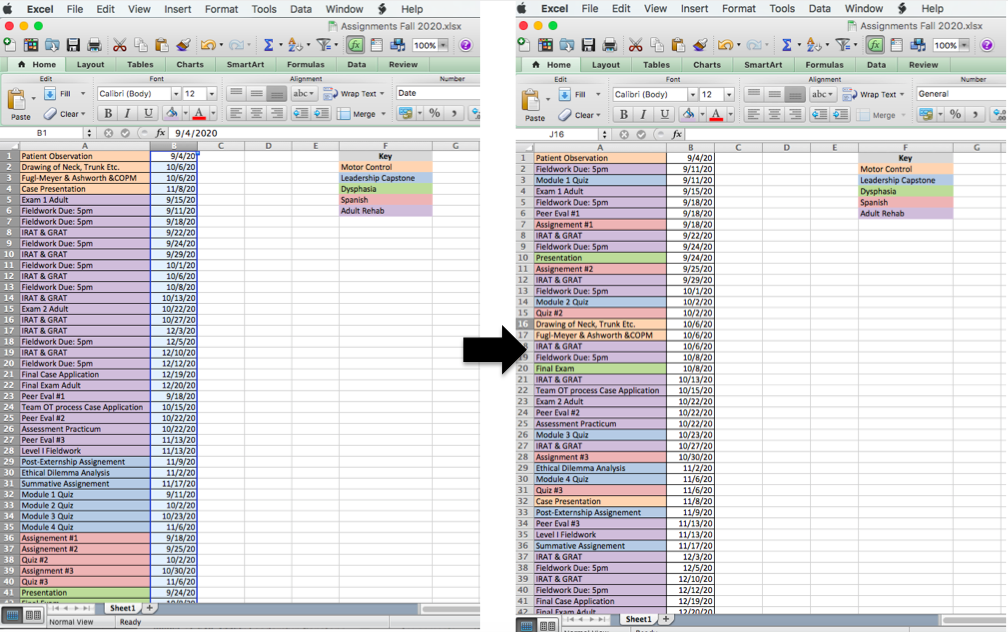 Savi's Assignment's in an Excel List