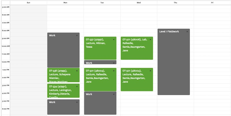 This image shows a typical weekly SChedule