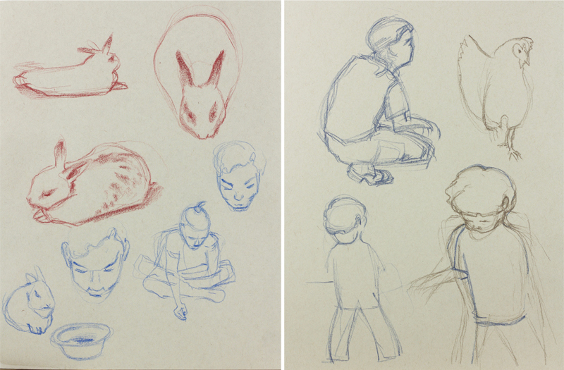 Sketches from rabbit pen and chicken coop